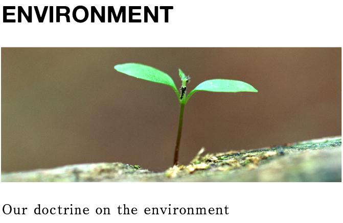 environment_03